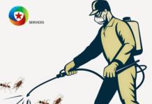 Diệt côn trùng hiệu quả với Fendona 10sc