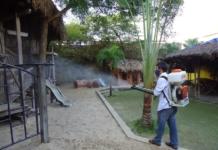 Phun diệt muỗi tại quảng nam, tp tam kỳ