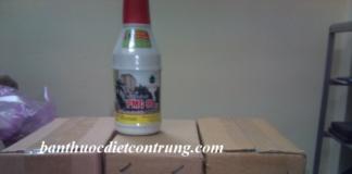 Thuốc diệt mối pmc 90 và hộp nhử môi